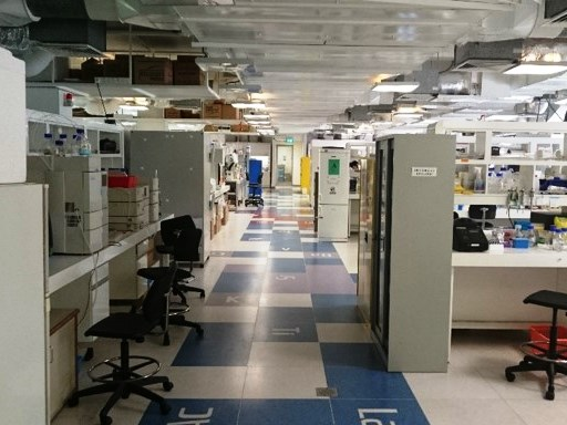 Overview of Wet Lab Area